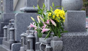 お墓の年間管理