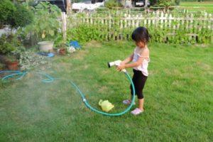 庭遊ぶ子供