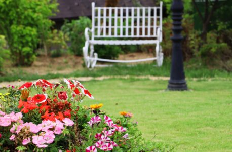 シンプルな庭