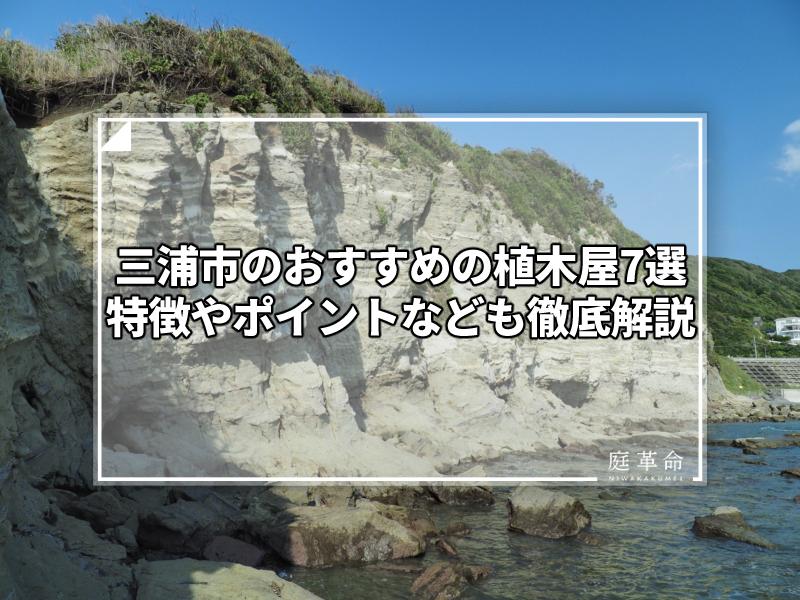 神奈川県・三浦半島・長者ヶ崎