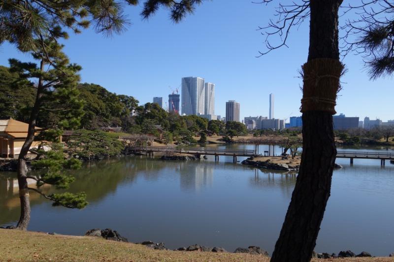 浜離宮恩賜庭園の潮入りの池