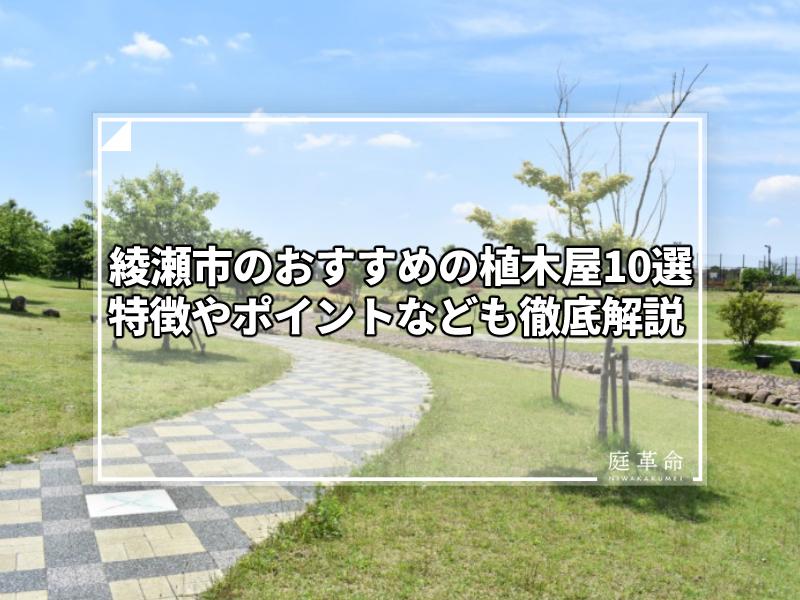 綾瀬市スポーツ公園