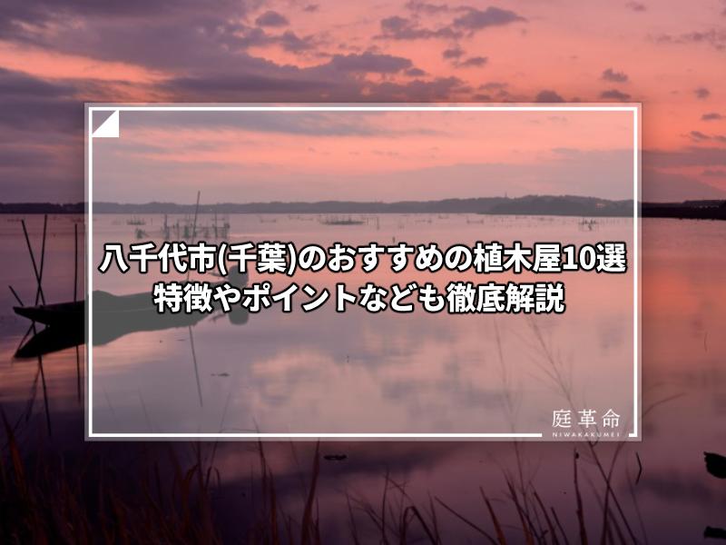 八千代市・夜明け前の印旛沼