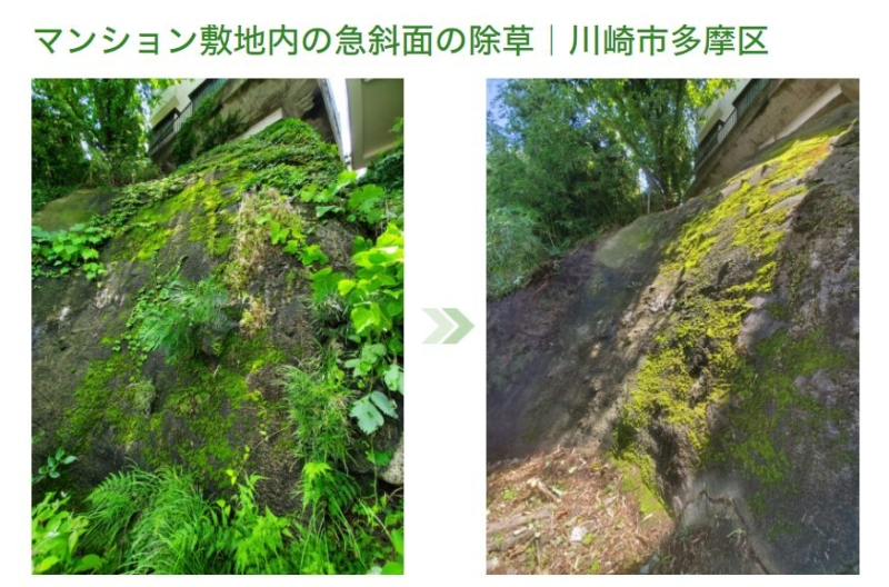 急斜面の除草
