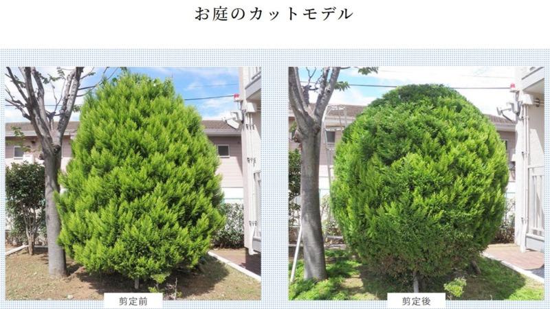 お庭のカットモデル