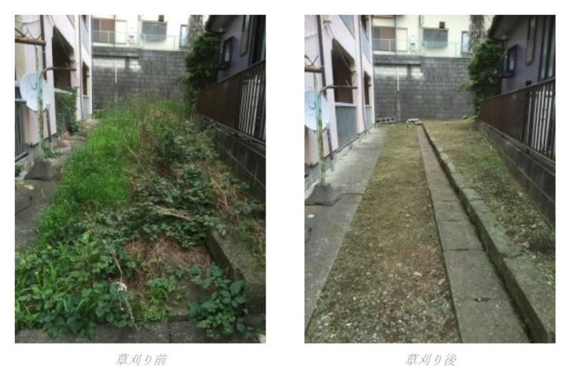 草刈り施工例
