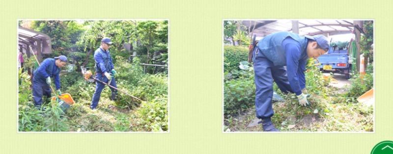 草刈り施工事例