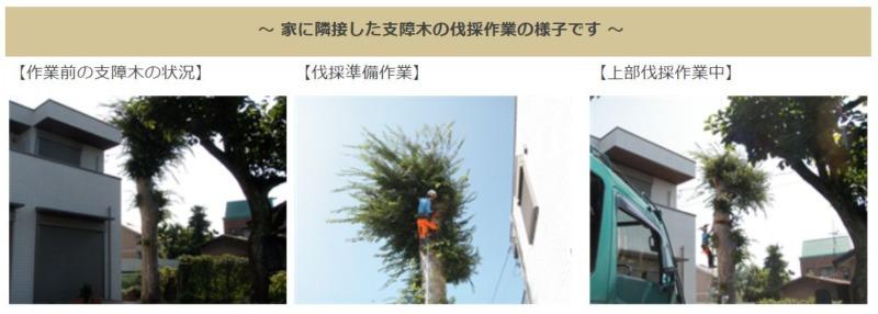 庭木・支障木伐採作業