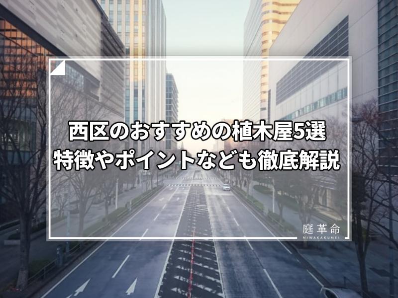 横浜みなとみらい・けやき通りの風景