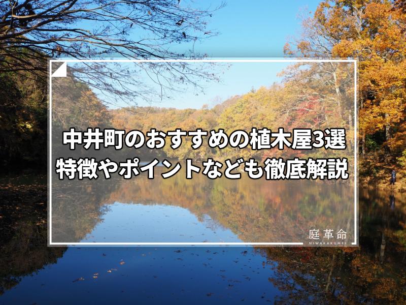 中井町・震生湖