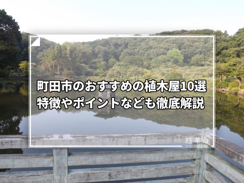 町田市・薬師池公園