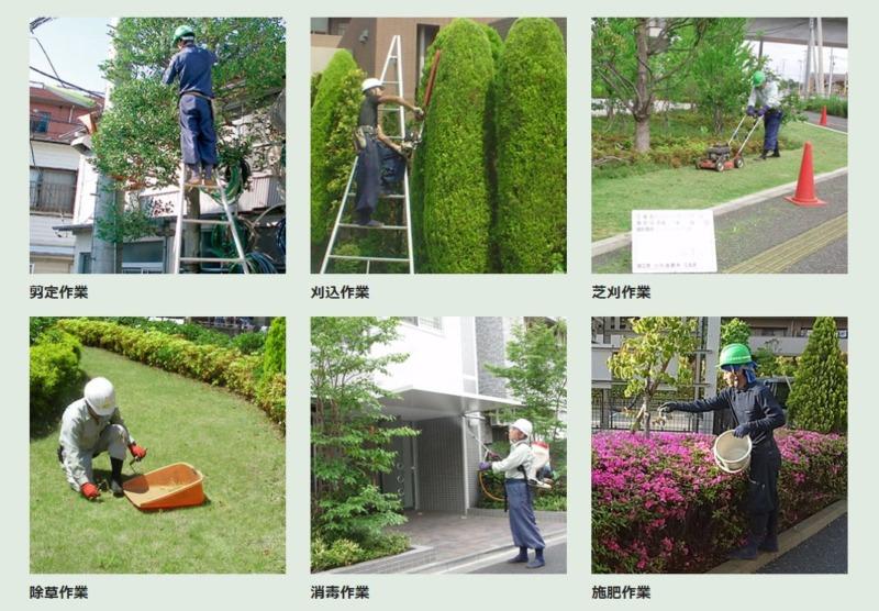 お庭のお手入れ・植栽管理サービス一覧