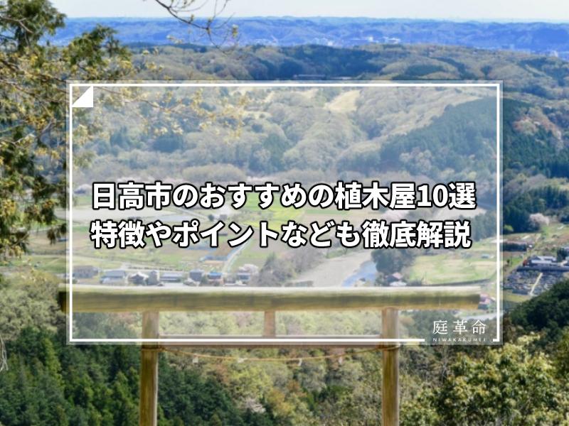日高市・日和田山