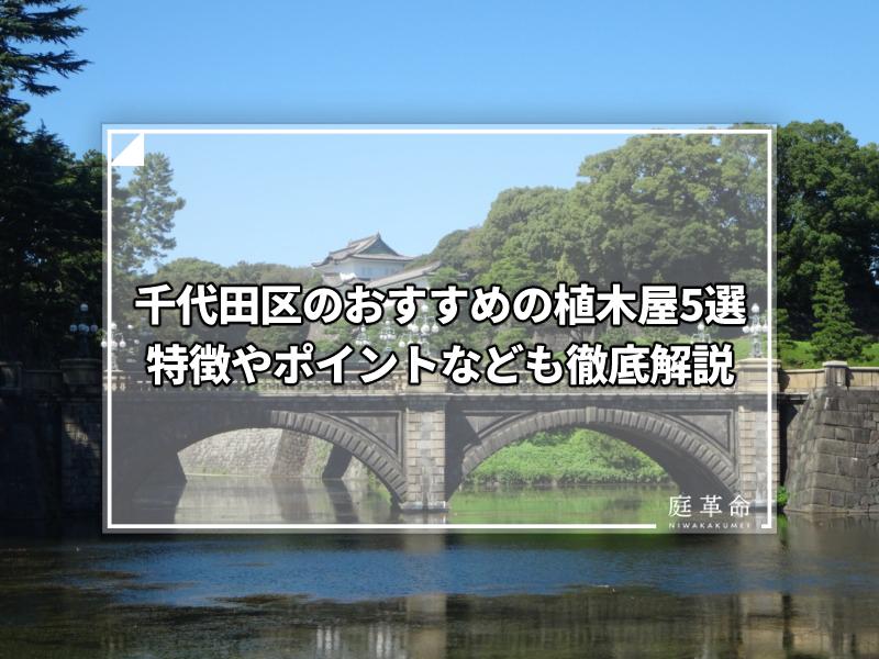 千代田区・皇居正門石橋