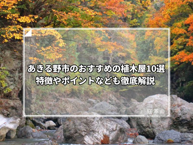 あきる野市秋川渓谷