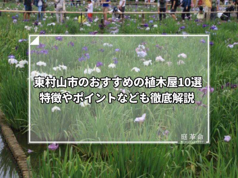 東村山市・北山公園菖蒲祭り