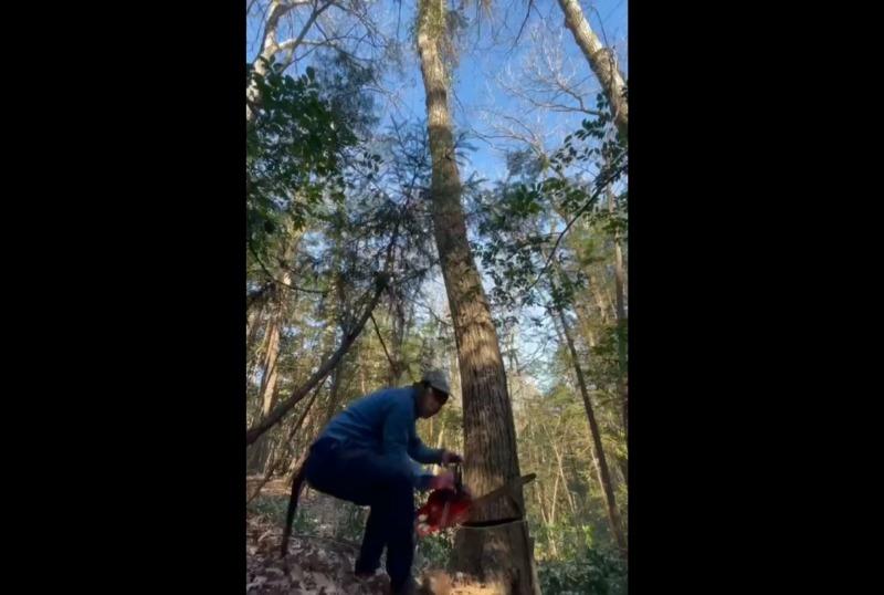 青梅の植木屋/安部植木の施工事例