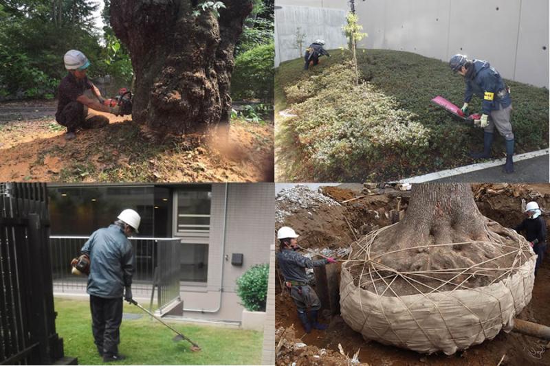 伸成緑化の施工事例